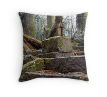 Stone Guard Throw Pillow