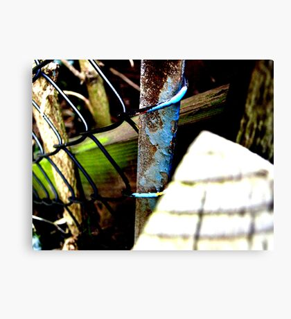 Decayed Fence! Canvas Print