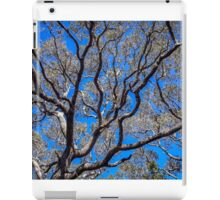 Beyond The Treetops To The Blue Sky iPad Case/Skin