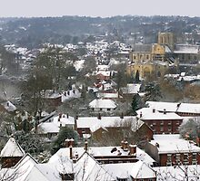 Panorama of central Winchester under snow seen from St Giles Hill, southern England by Philip Mitchell