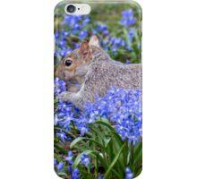 Springtime Squirrel iPhone Case/Skin