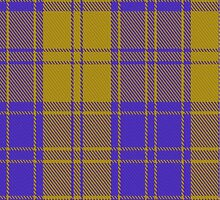 00495 MacLachlan Blue (Chief's Dress) Tartan  by Detnecs2013