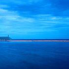 Newcastle Ocean Baths by Kylie Reid