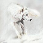 Whiteout by Peter Williams