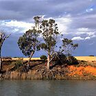 River Murray bank by Jessy Willemse