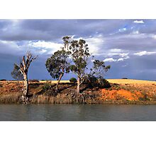 River Murray bank Photographic Print