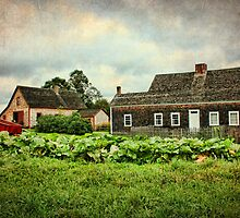 Ross Farm, Nova Scotia by Amanda White