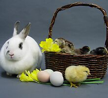 Easter basket 1 by InKibus