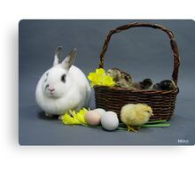 Easter basket 1 Canvas Print
