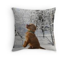 Tasting Frost Throw Pillow