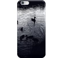 The Mill Pond iPhone Case/Skin