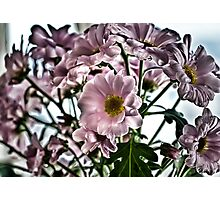HDR Flowers Photographic Print