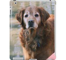 Loki Pausing - 15 iPad Case/Skin