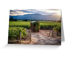 Little Shed in a Vineyard Greeting Card