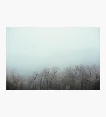Foggy Day I Photographic Print