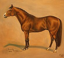 Thoroughbred  Sire  Danzig by Birgit Schnapp