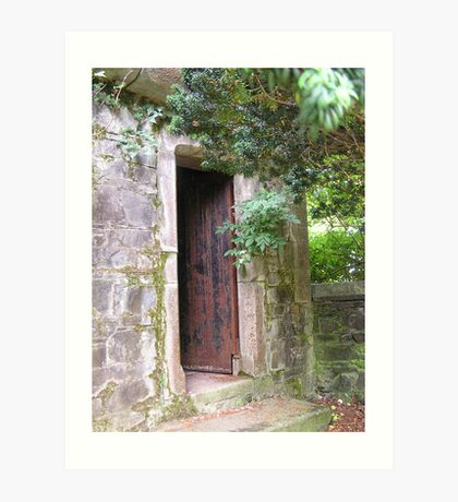 Door on Castle Grounds Art Print