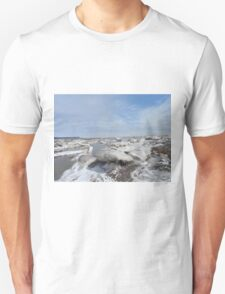 Nature's Ice Sculptures T-Shirt