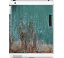 II iPad Case/Skin