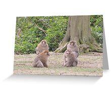 Monkey Meeting Greeting Card
