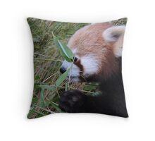 Little Bamboo, Little Panda Throw Pillow