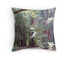 Redwood Forest Trail Throw Pillow