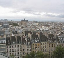 Paris skyline from the Pompidou Museum by Tony Dempsey