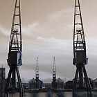 Old cranes, new life by banditloon