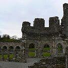 Mellifont Abbey by Finbarr Reilly