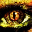 Fantasy Art Series: I've Got My Eye On You by Rebecca Richardson