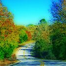 Country Curves by Glenna Walker