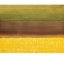 Harvest original painting Photographic Print