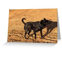 Dirty Boy! Greeting Card