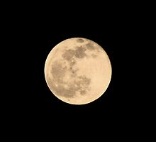 Full Moon Photograph by Adri Turner