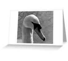 Mr Swan Greeting Card