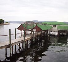 Sandy Bay Jetty and Boatsheds by Eleanor Wylie
