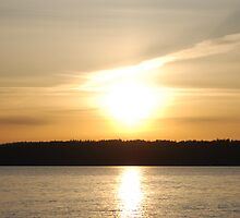 Camano Island State Park Sunset by Edith Farrell