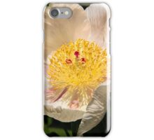 Beauty Of A Peony  iPhone Case/Skin