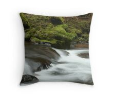 Sweet Creek 6 Throw Pillow