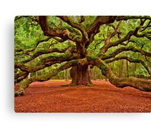 Angel Oak Arms Open Wide Canvas Print