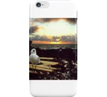 Ashes, Ashes, Seagull, Sky iPhone Case/Skin
