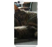 tabby cat iPhone Case/Skin