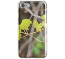 Vines in Spring iPhone Case/Skin