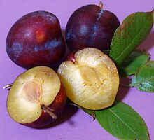 Plums by Anna D'Accione