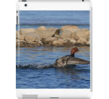 Redhead Skimming the Surface iPad Case/Skin