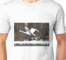Trumpeter Swan in flight Unisex T-Shirt