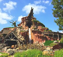 Disneyland's Splash Mountain by disneylandaily