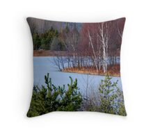 North Point Throw Pillow