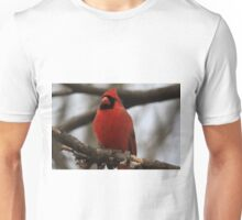 Male Cardinal-Looking Handsome Unisex T-Shirt