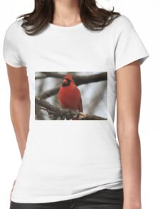 Male Cardinal-Looking Handsome Womens Fitted T-Shirt
